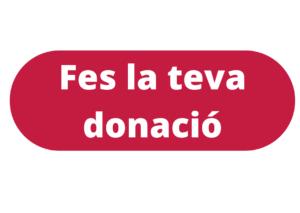 Fundacio Fibs donacions